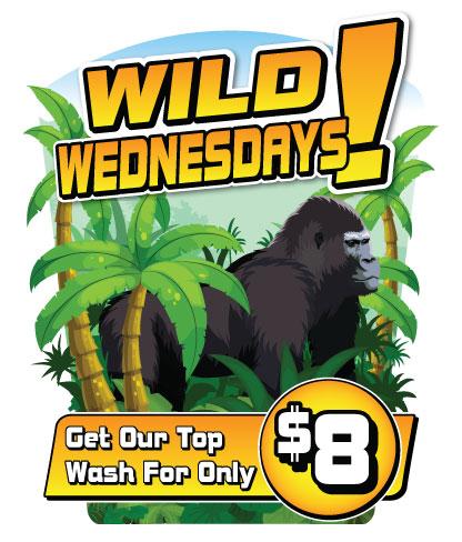 Wild Wednesdays Antenna Design